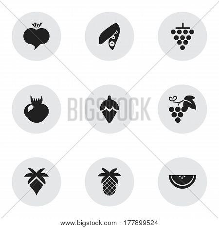 Set Of 9 Editable Berry Icons. Includes Symbols Such As Soybean, Tropical Fruit, Cluster And More. Can Be Used For Web, Mobile, UI And Infographic Design.