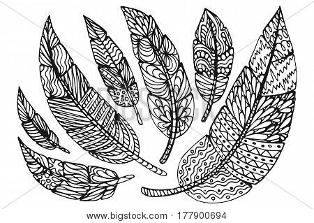 Ethnic feathers. Tribal Feathers Vintage Pattern. Hand Drawn Doodles. Vector illustration