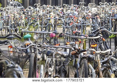 Bicycle Parking Organized Chaos In Amsterdam, Netherlands