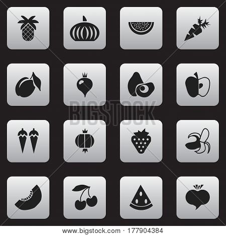 Set Of 16 Editable Vegetarian Icons. Includes Symbols Such As Apricot, Papaya, Turnip And More. Can Be Used For Web, Mobile, UI And Infographic Design.