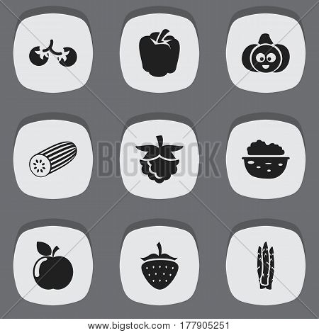 Set Of 9 Editable Cookware Icons. Includes Symbols Such As Pecan, Sparrowgrass, Cucumber And More. Can Be Used For Web, Mobile, UI And Infographic Design.