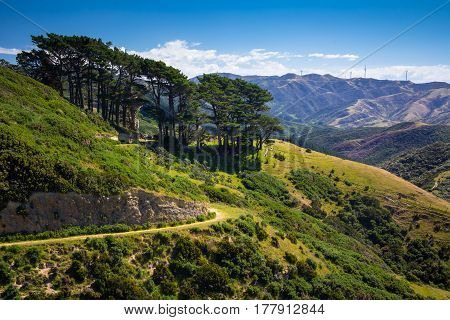 Location: New Zealand, capital city Wellington, North Island. View from the SkyLine track and Mount KayKay