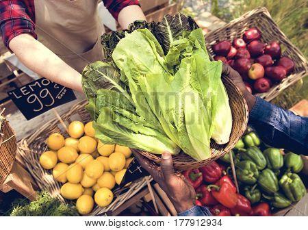 People Organic Market Festive Healthy