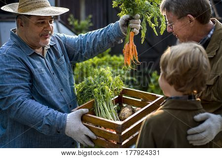 Family buying fresh vegetable from the garden