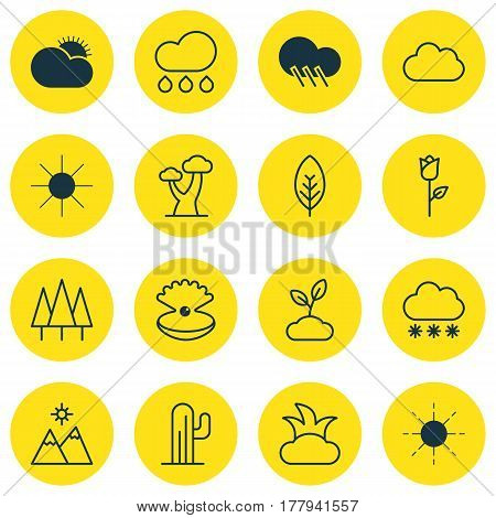 Set Of 16 Nature Icons. Includes Snowstorm, Rain, Sunny Weather And Other Symbols. Beautiful Design Elements.