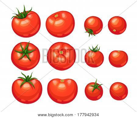 Tomatoes Icon Isolated