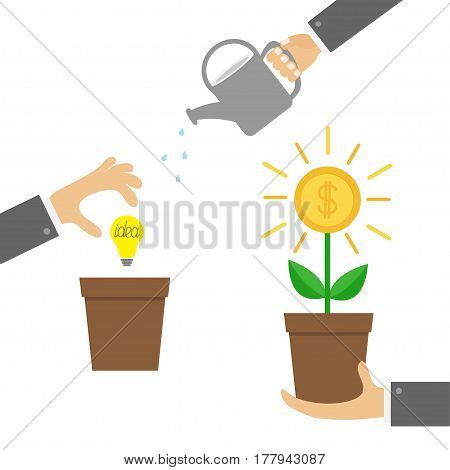 Businessman hand holding money tree watering can idea bulb. Coin dollar sign Plant in the pot. Three step infographic. Financial growth concept. Business icon set Flat design White background Vector