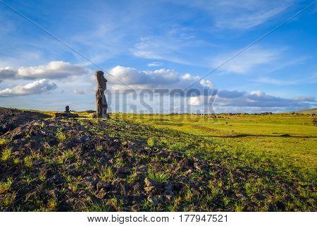 Moai Statue, Ahu Akapu, Easter Island