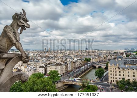 Wide angle view of gargoyle and Paris cityscape from Notre Dame Cathedral church, France