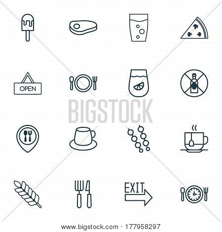 Set Of 16 Food Icons. Includes Lemonade, Pepperoni, Stick Batbecue And Other Symbols. Beautiful Design Elements.