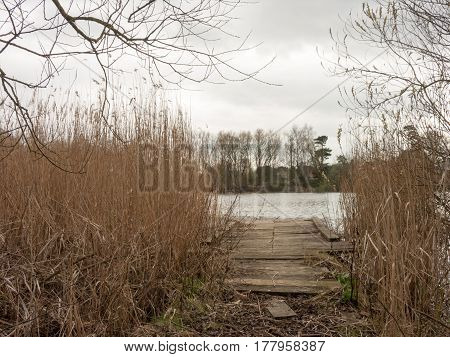 One of the beautiful planks leading onto a lake in Wivenhoe