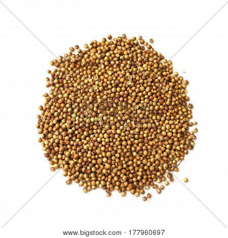 Circle  Made Of Coriander Seeds Isolated On White Background