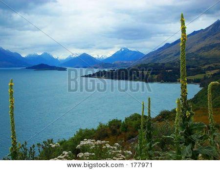 Lake Wakitipu,south Island,nz