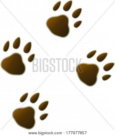 Four volumetric brown cartoon footprints trace of wild beast bear tiger. Vector illustration.