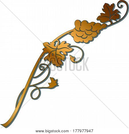 Golden grape branch with bunch of grapes and leaves. Vintage winery design element. Can be used in menu restaurant cafe bar etc.