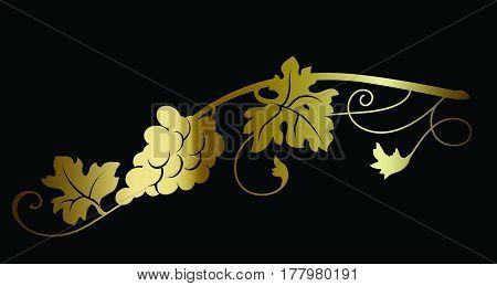 Gold grape wine branch on black background vector illustration. Wine theme design decorative element.