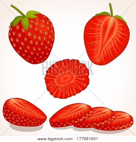 Set of vector strawberry. Whole sliced half of a strawberry isolated on white background. Vector illustration.