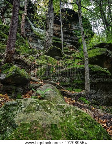 View of some of the moss covered rock formations at Virginia Kendall Ledges in Cuyahoga Valley National Park near Cleveland Ohio.