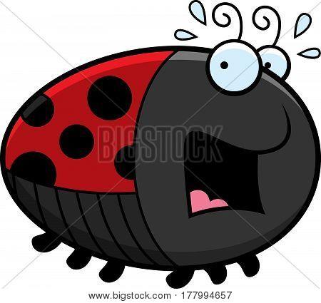 Scared Cartoon Ladybug