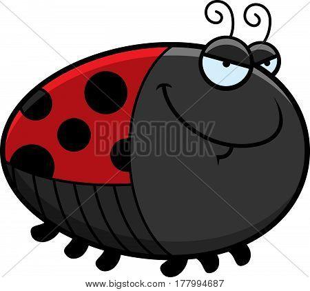 Sly Cartoon Ladybug