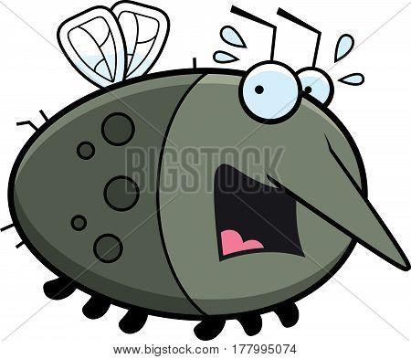 Scared Cartoon Mosquito