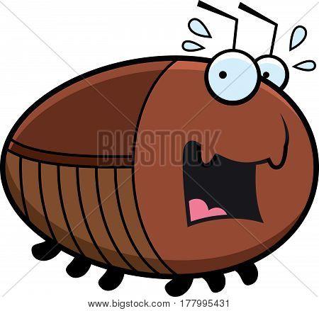 Scared Cartoon Cockroach