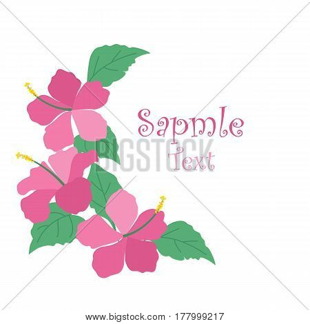 Vector illustration hibiscus flower. Background with tropical flowers