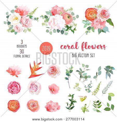 Orange Ranunculus, Pink Rose, Hydrangea, Coral Carnation, Garden Flowers, Greenery And Decorative Pl