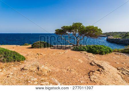 Beautiful Coast View Of Majorca Island, Spain Mediterranean Sea