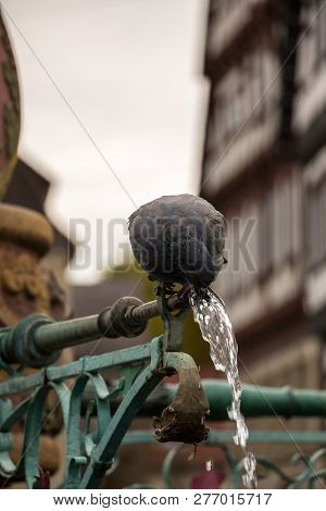Drinking Pigeon Sitting On A Fountain With Old Houses In The Background