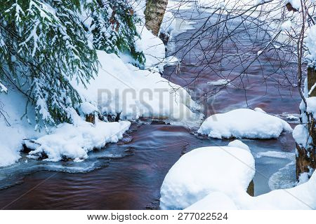 The Landscape Of The Brook In The Beautiful Winter Forest Or In The Park Among The Trees Under The S