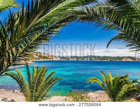 Idyllic View Of Seaside In Cala Fornells, Bay Beach Majorca, Spain Mediterranean Sea