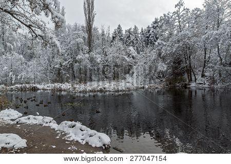 Bulgaria, Sofia, City, Tree, Snow, Winter, Park, South Park, South, Park,landswinter View With Snow