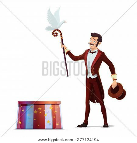 Circus Magician Performing Tricks With Top Hat, Magical Wand And White Dove Bird. Illusionist Magic