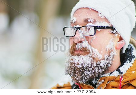 Portrait Of A Young Bearded Man Frozen In A Blizzard In The Woods. Face, Beard , Mustache And Glasse