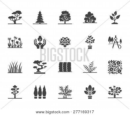 Trees Flat Glyph Icons Set. Plants, Landscape Design, Fir Tree, Succulent, Privacy Shrub, Lawn Grass