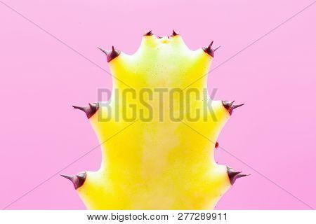 Cactus Fashion Set Design. Minimal Stillife. Trendy Bright Colors. Yellow Mood On Pink Background