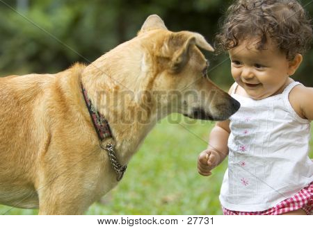 Infant And Dog