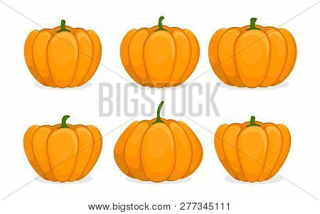 Cartoon Pumpkin Set. Different Shapes And Sizes Orange Gourd Isolated On White Background. Vegetable
