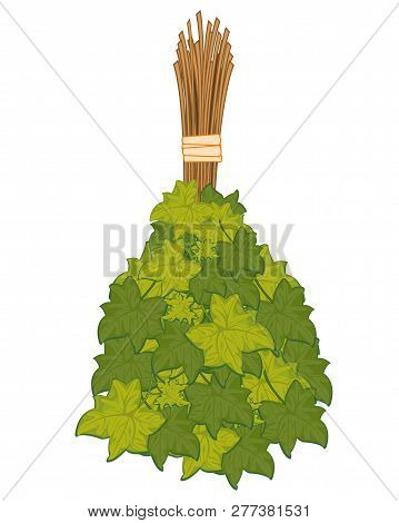 Besom From Foliage For Washing In Bath