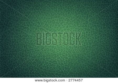 Leather Green, Spotlit
