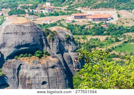 Group Of Swallows Sitting On High Growing Mountain Tree With Panoramic View Of Scenic Meteora Rock F