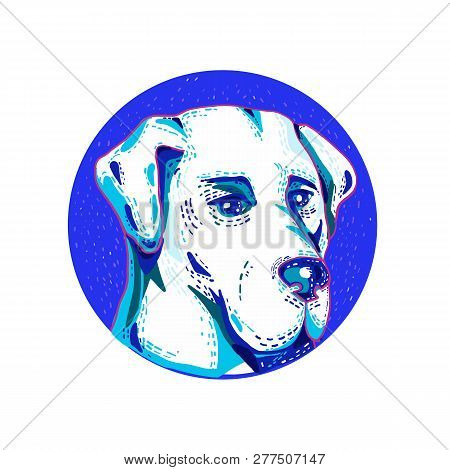 Doodle art illustration of head of a Labrador Retriever or Lab, a type of retriever-gun dog set inside circle done in retro style. poster
