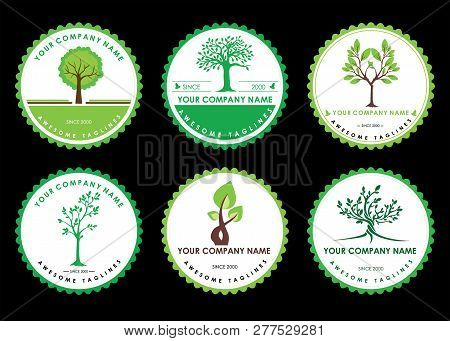 Set Circle Green Tree With Leaves Logo . Six Logo Tree Green Circle  Isolated On Black Background. H
