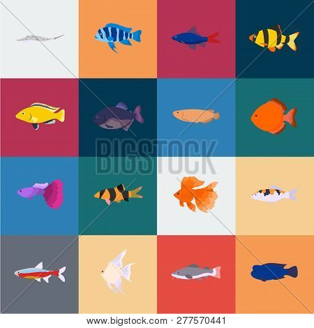 Different Types Of Fish Cartoon Icons In Set Collection For Design. Marine And Aquarium Fish Vector