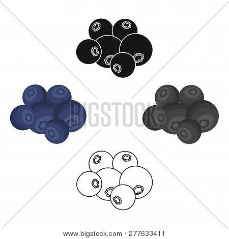 Blueberry Berries, Sweet Fruit. Fruit Single Icon In Cartoon Style Vector Symbol Stock Illustration