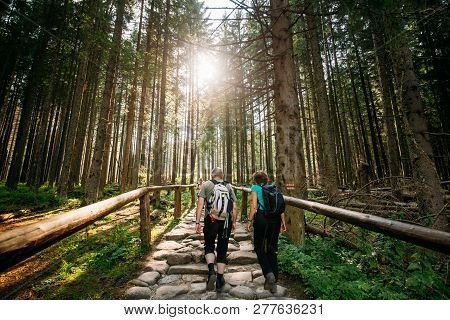 Tatra National Park, Poland - August 29, 2018: Tourists People Walking On Hiking Trail In Summer Tat