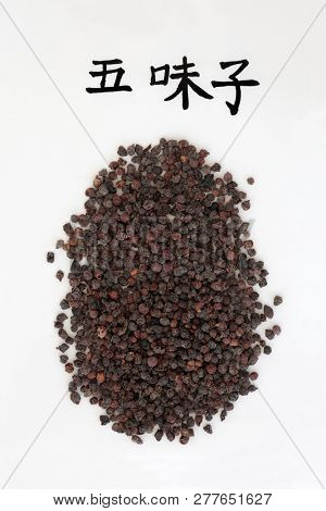Chinese schisandra berries used in chinese herbal medicine with calligraphy script, is an astringent & sedative & has many other health benefits. Translation reads as magnolia vine schisandra. Wu wei