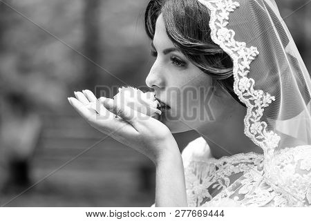 Portrait With Side View Of One Beautiful Young Brunette Sensual Pensive Bride In White Lace Dress An