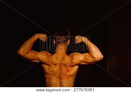 Muscle Concept. Bodybuilder With Strong Muscle Torso Back. Muscle Man Flex Biceps And Triceps. Muscl